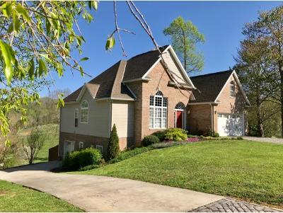 Blountville TN Single Family Home For Sale: $324,850