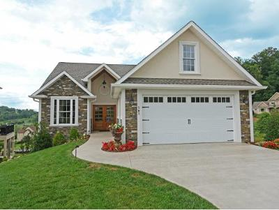 Jonesborough Single Family Home For Sale: 161 Quail Ridge Way