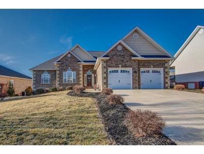Jonesborough Single Family Home For Sale: 369 Goldenrod Drive