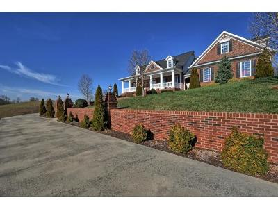Kingsport Single Family Home For Sale: 109 Golf Ridge Drive