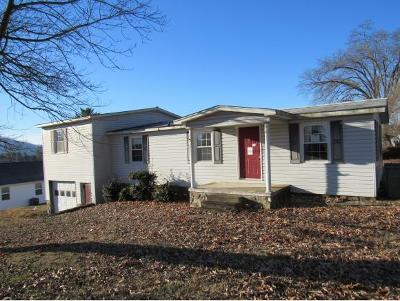 Mount Carmel Single Family Home For Sale: 241 Concord Ave