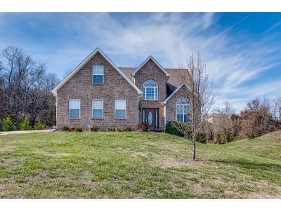 Gray Single Family Home For Sale: 14 Grace Meadows Ct