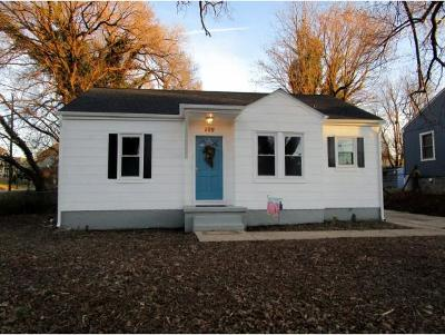 Bristol Single Family Home For Sale: 509 Riverview Dr