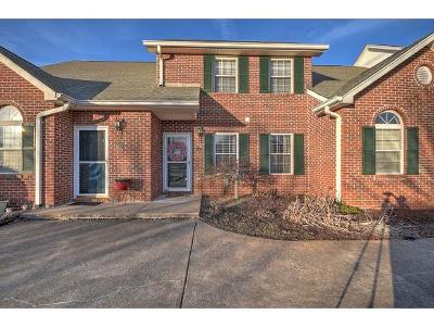 Blountville Condo/Townhouse For Sale: 149 Eagle View Private Dr #149