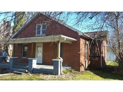 Roan Mountain Single Family Home For Sale: 207 Main Street