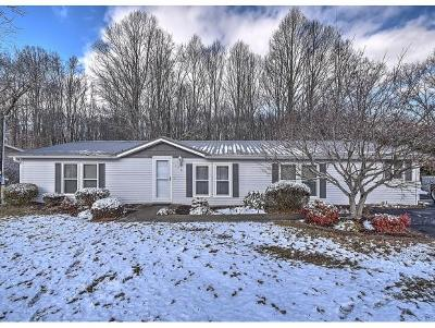 Blountville Single Family Home For Sale: 476 Pleasant Hill Rd
