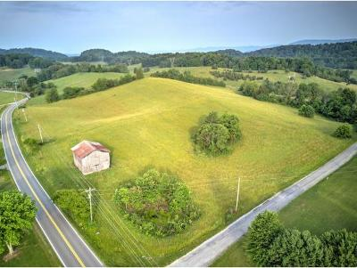 Residential Lots & Land For Sale: Kingsport Hwy 93