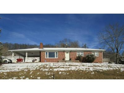 Blountville Single Family Home For Sale: 3297 Island Rd