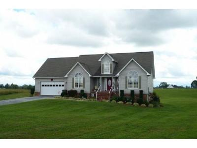 Fall Branch Single Family Home For Sale: 134 Butchertown Rd.