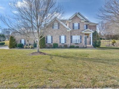 Gray Single Family Home For Sale: 136 Ridgeview Meadows Drive