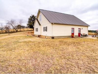 Bluff City Single Family Home For Sale: 235 Graybeal Rd.
