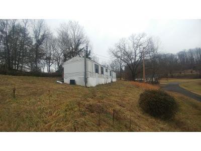 Johnson City Single Family Home For Sale: 113 Ed Carpenter Rd.