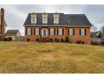 Kingsport Single Family Home For Sale: 1258 Morning Dove Drive