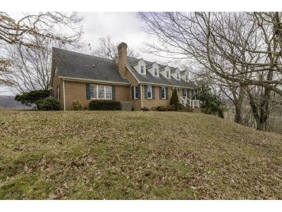 Abingdon Single Family Home For Sale: 20474 Green Spring Road