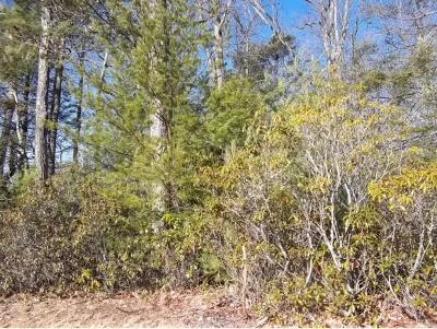 Residential Lots & Land For Sale: LOT 8 Oak Ridge
