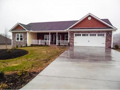 Jonesborough Single Family Home For Sale: 1097 Peaceful Drive