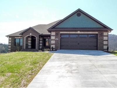 Jonesborough Single Family Home For Sale: 1081 Peaceful Drive