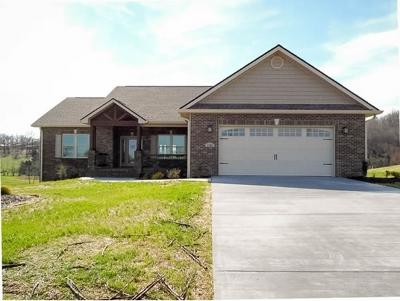 Jonesborough Single Family Home For Sale: 1121 Peaceful Drive