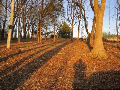 Washington-Tn County Residential Lots & Land For Sale: tbd Old State Route 34