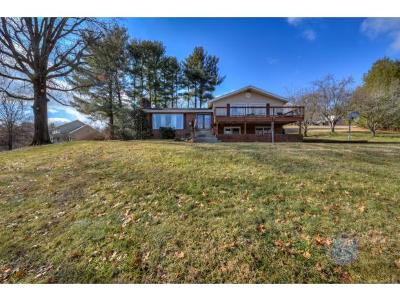 Bristol Single Family Home For Sale: 186 Spring Branch Rd