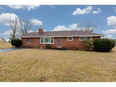 Church Hill Single Family Home For Sale: 6014 Carters Valley Road