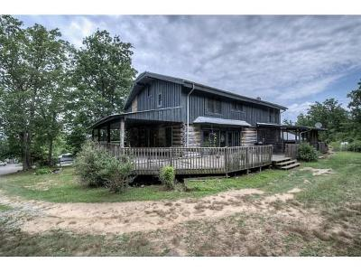 Greeneville Single Family Home For Sale: 1074 Old Mountain Rd