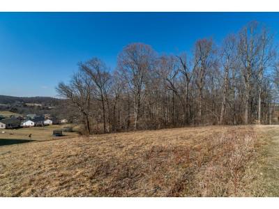 Johnson City Residential Lots & Land For Sale: 1283 Martins Glen Ln
