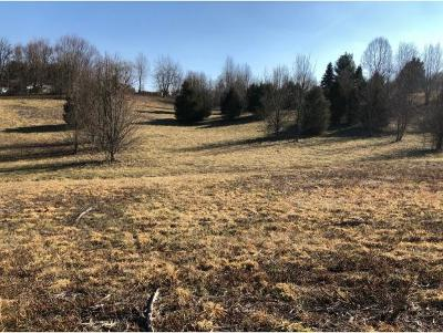 Washington-Tn County Residential Lots & Land For Sale: TBD Hales Chapel Road