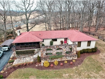 Johnson City Single Family Home For Sale: 313 Possum Hollow Rd
