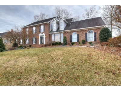 Jonesborough Single Family Home For Sale: 16 Dove Tree Lane