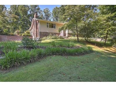 Jonesborough Single Family Home For Sale: 169 Sycamore Circle