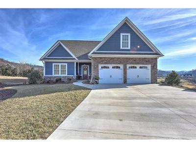 Kingsport Single Family Home For Sale: 299 Old Island Trl