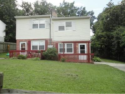 Bristol VA Multi Family Home For Sale: $89,985