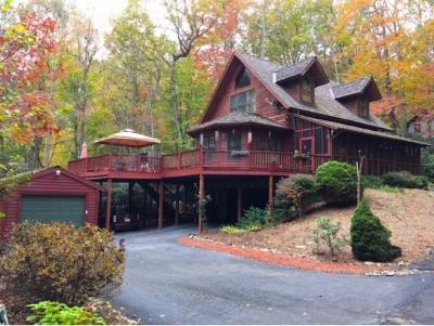 Mountain City Single Family Home For Sale: 319 Ivy Wood Lane