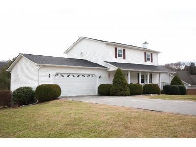 Johnson City Single Family Home For Sale: 4134 Bradford