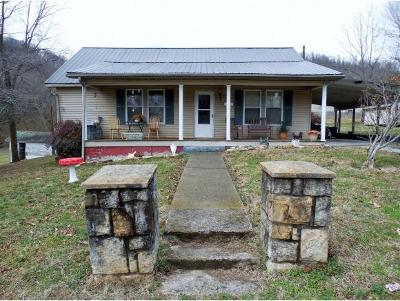 Rogersville Single Family Home For Sale: 429 Waterson Street