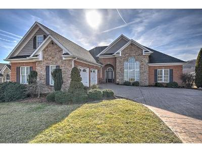Kingsport Single Family Home For Sale: 2216 Valley Falls Court
