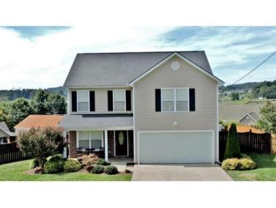 Gray Single Family Home For Sale: 148 Bend Ct