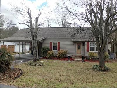 Elizabethton Single Family Home For Sale: 421 Monument Pl