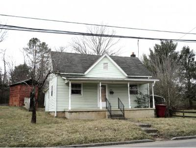 Johnson City Single Family Home For Sale: 610 Antioch Rd
