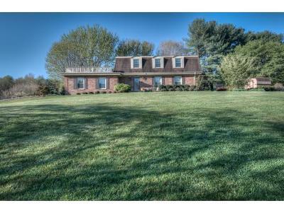 Bristol VA Single Family Home For Sale: $219,985