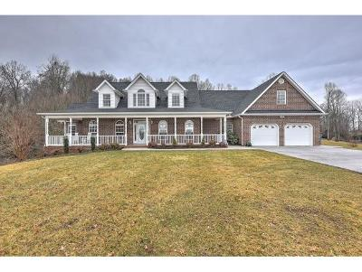 Blountville Single Family Home For Sale: 553 Bowman Creek Rd