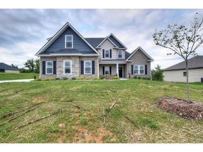 Jonesborough Single Family Home For Sale: 1310 Peaceful Drive