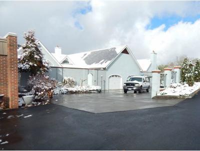 Bristol TN Condo/Townhouse For Sale: $190,000