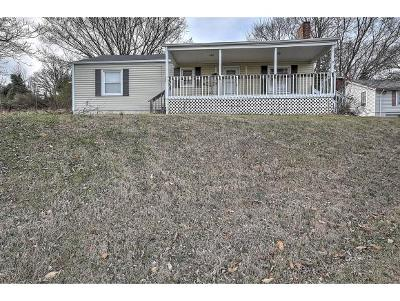 Kingsport Single Family Home For Sale: 120 Ethel Drive