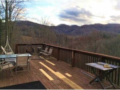 Roan Mountain Single Family Home For Sale: 120 Jess Mosley