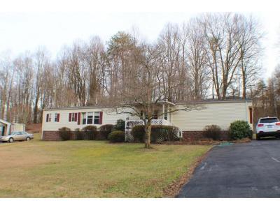 Blountville Single Family Home For Sale: 377 Johnson Cemetery Rd.