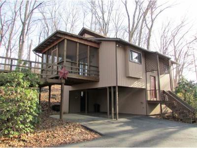 Elizabethton Single Family Home For Sale: 526 Jobe Road