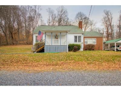 Blountville Single Family Home For Sale: 416 Dunlap Road