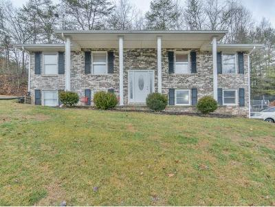 Kingsport Single Family Home For Sale: 1249 Nassau Drive